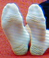 20070911_socks.jpg